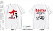 湖南师范大学定制的简约个性青春不散场毕业10年白色短袖聚会服